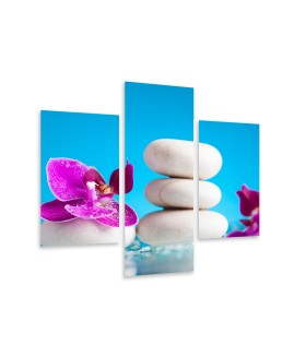 Multi-canvas 3x Spa pink orchid